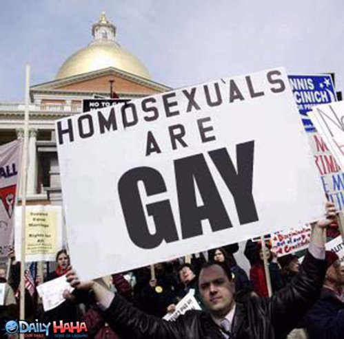 homosexuals_are_gay