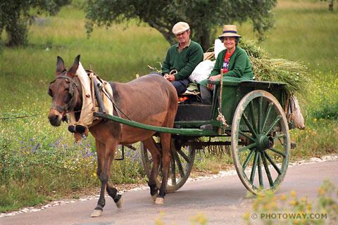 PO98_117-paysans-portugais